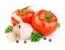 De groenten van de tomaat en van het knoflook met peterseliekruid Stock Fotografie