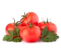 De groenten van de tomaat en van peterseliebladeren stilleven Royalty-vrije Stock Foto's