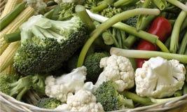 De groenten van de tuin Royalty-vrije Stock Afbeelding
