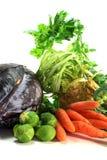 De groenten van de winter stock fotografie