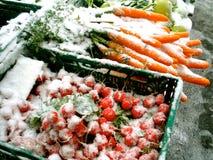 De Groenten van de winter stock afbeeldingen