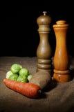 De Groenten van de winter met Zout en Peper Royalty-vrije Stock Foto's
