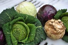 De groenten van de winter op sneeuw Royalty-vrije Stock Fotografie