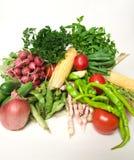 De groenten van de zomer Stock Foto