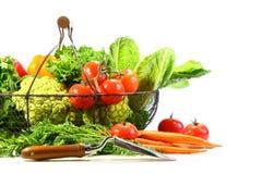 De groenten van de zomer met tuinschop Stock Afbeelding