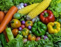 De groenten zijn goed voor gezondheid stock afbeeldingen