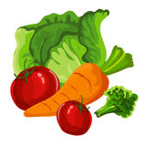 De groenten zijn de heerlijke zomer, Royalty-vrije Stock Afbeelding