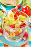 De groentensalade van de lente Stock Afbeeldingen