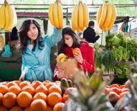 De groentenvruchten van de markt Stock Fotografie