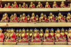 De groep de kleine standbeelden van Boedha in boeddhistentempel Royalty-vrije Stock Foto's