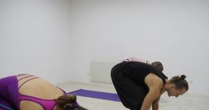 De groep die van de yogaklasse gezonde levensstijl in de yogastrijder van de geschiktheidsstudio uitoefenen stelt stock footage