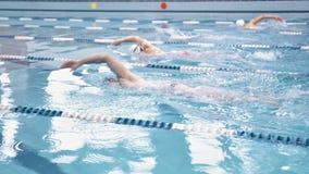 De groep jonge mannelijke atletische professionele zwemmers die opleiding hebben kruipt bij waterpool stock footage