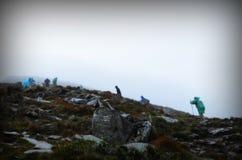 De groep klimmers bereikt de bovenkant van bergpiek Het beklimmen en alpinismesport Het schaak stelt bischoppen voor stock afbeelding