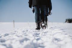 De groep mensen neemt een gang door ijzig toneel de wintergebied royalty-vrije stock fotografie