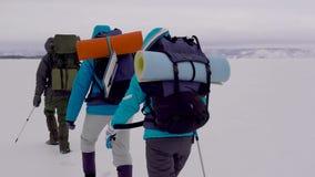 De groep toeristen is trekking in bergen in de winterdag, dragende rugzakken en het duwen weg door stokken stock videobeelden