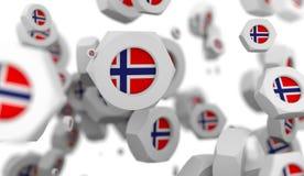 De groep van de notenlevitatie met vlag van Noorwegen Stock Afbeeldingen
