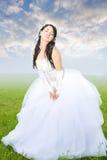 De groep van de schoonheid bruid stock foto's