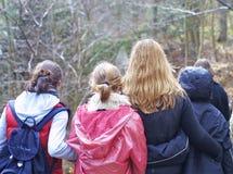 De groep van de tiener Stock Foto's