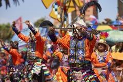 De Groep van de Tinkudans - Arica, Chili Stock Foto