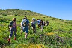 De groep wandelaars loopt berg landelijk landschap Stock Afbeeldingen
