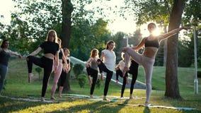 De groep yoginivrouwen die zich op yogamatten bevinden en op been in evenwicht brengen stelt binnen boom stock video
