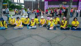 De Groepsremonstra van steun falun dafa royalty-vrije stock fotografie
