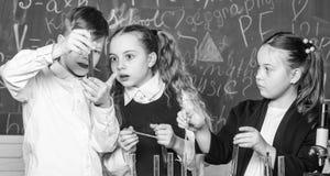 De groepsscholieren bestuderen chemische vloeistoffen Reageerbuizen met kleurrijke substanties Meisjes en jongens de school van h royalty-vrije stock afbeeldingen