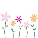 De groetkaart van de bloem Stock Foto