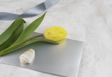 De groetkaart van de lente Stock Afbeeldingen