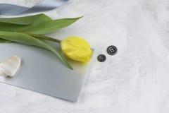 De groetkaart van de lente Royalty-vrije Stock Foto
