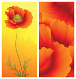 De groetkaart van de lente met papaver Royalty-vrije Stock Fotografie