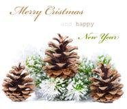 De groetkaart van Kerstmis met kegels Stock Fotografie