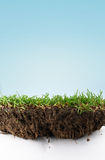 De grond van het gras Royalty-vrije Stock Fotografie