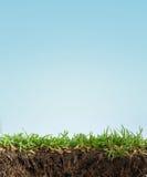 De grond van het gras Stock Foto's