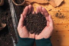 De grond van de tuinmanholding in tot een kom gevormde handen, hoogste mening stock afbeeldingen