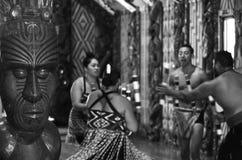 De Gronden van het Waitangiverdrag Stock Fotografie