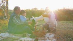 De grootmoeder houdt zoete gebakjes in handen op aard bij picknick, zit de grootvader met kleinzoon op plaid dichtbij hond stock video