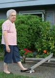 De Grootmoeder van het skateboard Stock Fotografie