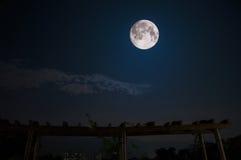 De grootste maan in nacht Stock Foto