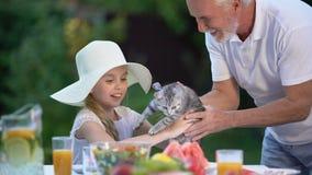 De grootvader die katten vrolijk meisje in hoed voorstellen, verrast heden, anticiperen stock videobeelden