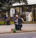 De grootvader met een harmonika zit en speelt Rusland, Krasnodar, 7,2018 oktober royalty-vrije stock afbeeldingen