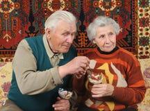De grootvader neemt aardbei van grootmoeder Royalty-vrije Stock Fotografie