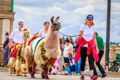 De Grote Bloemenparade 2016 van Portland Stock Foto's