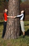 De grote boom van de Pijnboom Stock Afbeelding