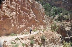 De Grote Canion van de weg van de wandeling stock fotografie