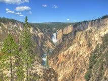 De grote Canion van Yellowstone Royalty-vrije Stock Fotografie