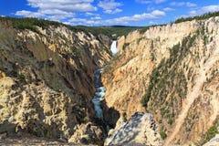 De grote Canion van Yellowstone Stock Foto's