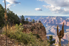 In de Grote canion & x28; zuiden rim& x29; Arizona, de V.S. Royalty-vrije Stock Foto