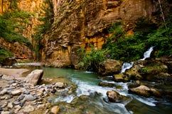De grote die Lente in Zion Canyon, tijdens Wordt genomen versmalt stijging in Zion Stock Afbeelding