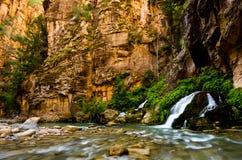 De grote die Lente in Zion Canyon, tijdens wordt genomen versmalt stijging in Zion Royalty-vrije Stock Afbeeldingen